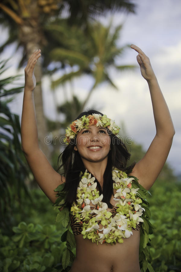 Ritratto di un danzatore hawaiano di hula fotografia stock