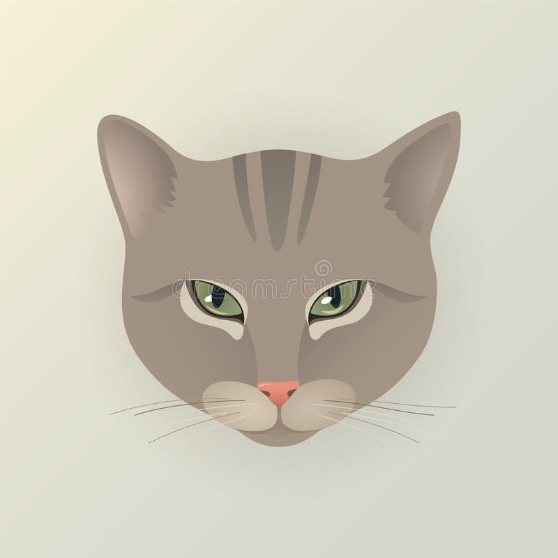 Ritratto di un gatto di signora illustrazione di stock