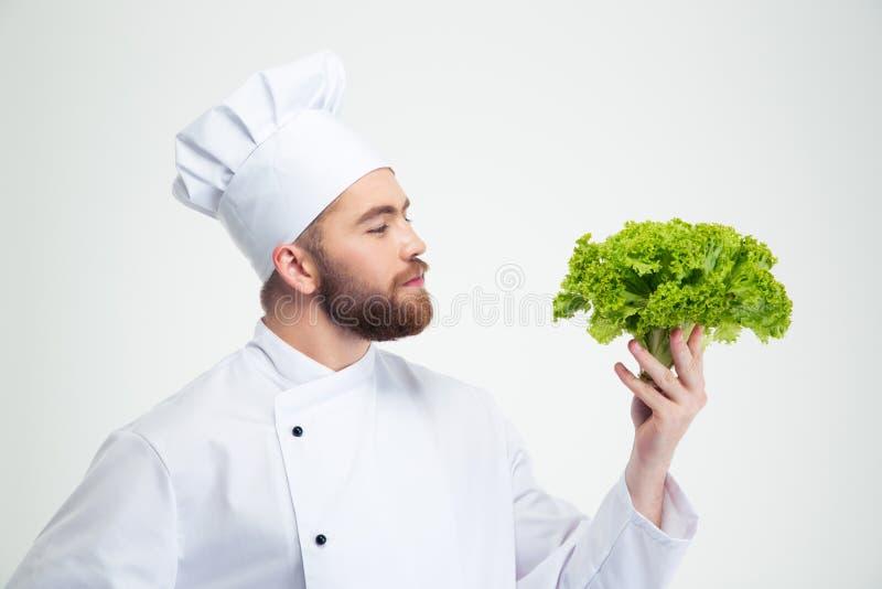 Ritratto di un'insalata maschio bella della tenuta del cuoco del cuoco unico immagine stock libera da diritti