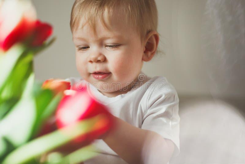 Ritratto di un ragazzino sveglio che sorride ed esamina i tulipani variopinti Giorno pieno di sole Abbagliamento di Sun nel telai fotografia stock
