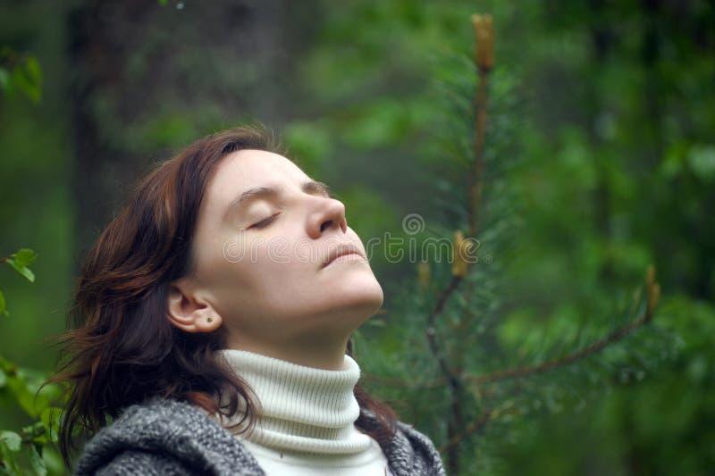 Ritratto di un riposo della donna immagini stock