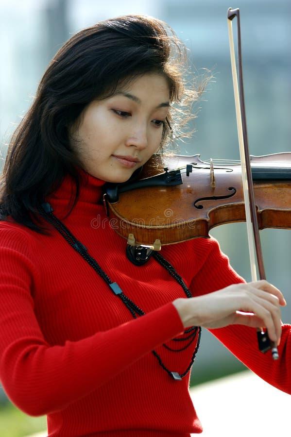 Ritratto di un violinista fotografia stock