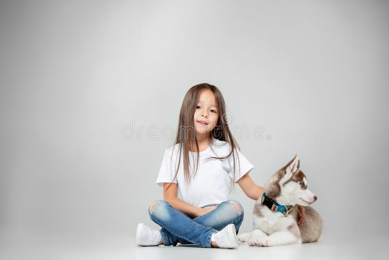 Ritratto di una bambina allegra divertendosi con il cucciolo del husky siberiano sul pavimento allo studio fotografia stock libera da diritti