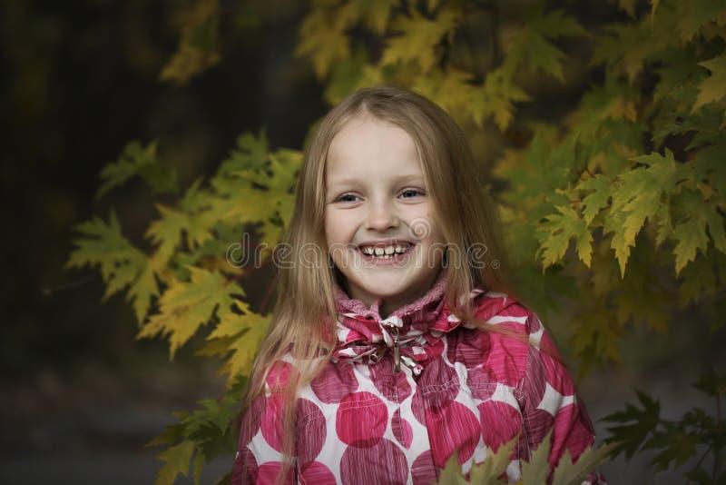 Ritratto di una bambina sorridente felice nel parco di autunno Quattro anni svegli del bambino che gode della natura all'aperto fotografia stock libera da diritti