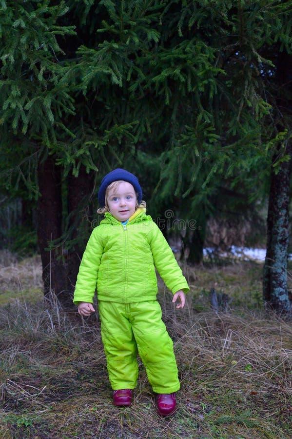 Ritratto di una bambina su un fondo attillato verde immagine stock libera da diritti
