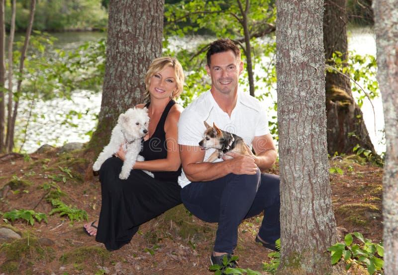 Ritratto di una coppia attraente con i cani immagini stock libere da diritti