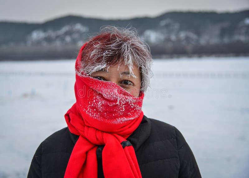 Ritratto di una donna asiatica nell'inverno immagini stock libere da diritti