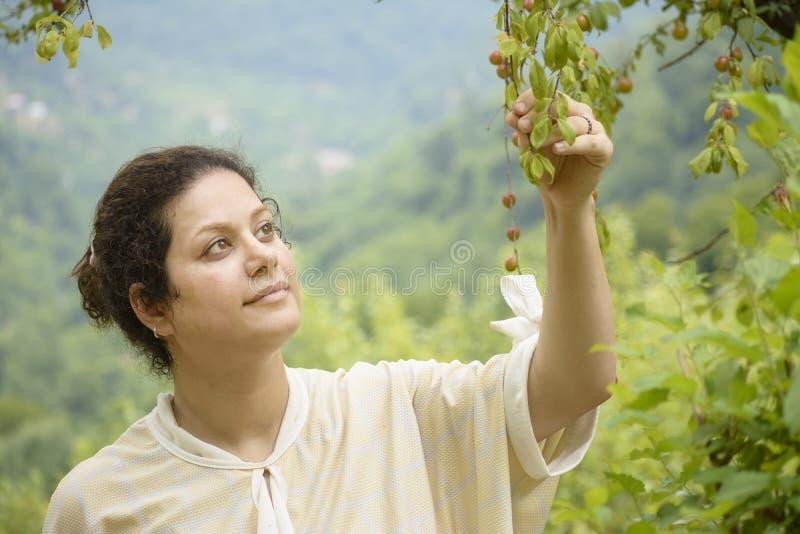 Ritratto di una giovane donna che tiene un concetto preoccupantesi di agricoltura del ramo di susino fotografia stock