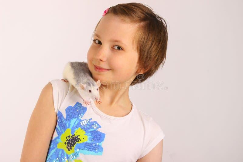 Ritratto di una ragazza graziosa con il suo ratto dell'animale domestico fotografia stock