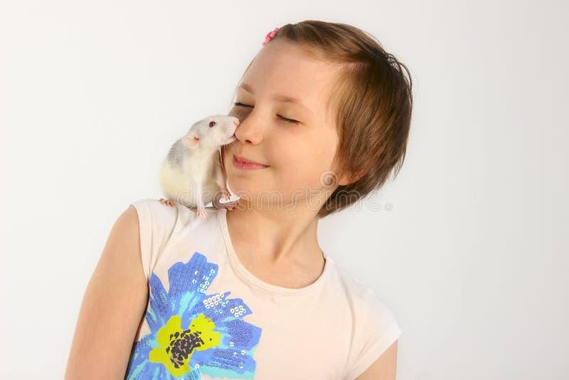 Ritratto di una ragazza graziosa con il suo ratto dell'animale domestico immagini stock libere da diritti