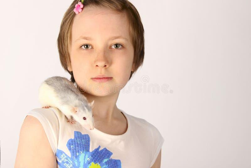 Ritratto di una ragazza graziosa con il suo ratto dell'animale domestico immagini stock