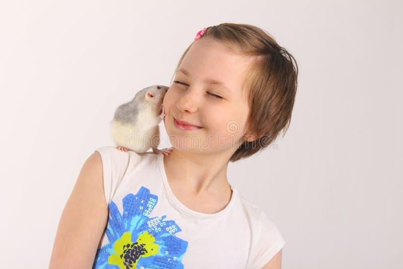 Ritratto di una ragazza graziosa con il suo ratto dell'animale domestico fotografie stock libere da diritti