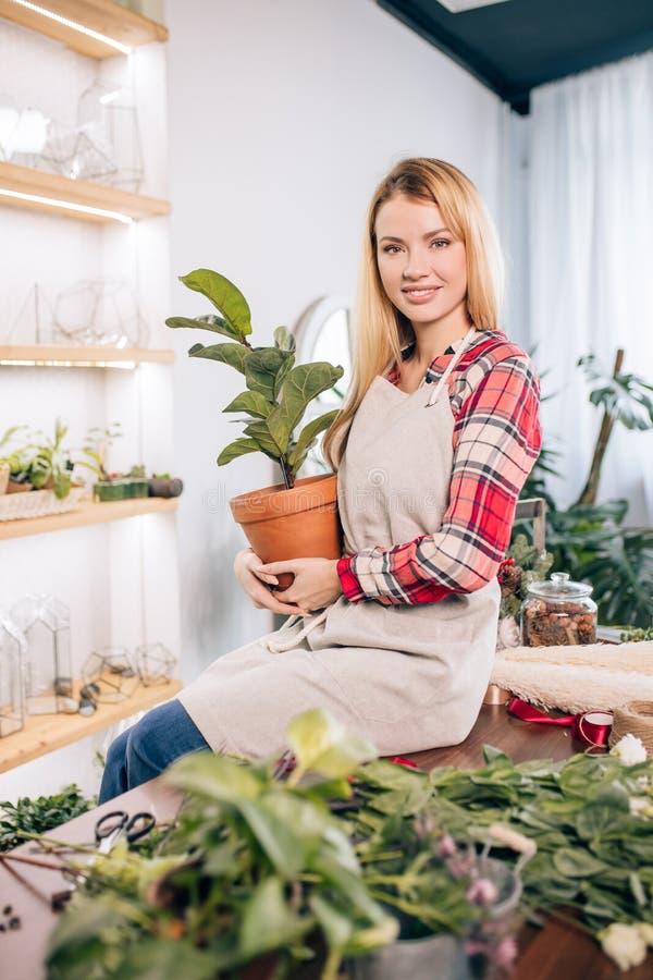 Ritratto di una signora fiorista di bellezza che tiene piante in pentola immagini stock