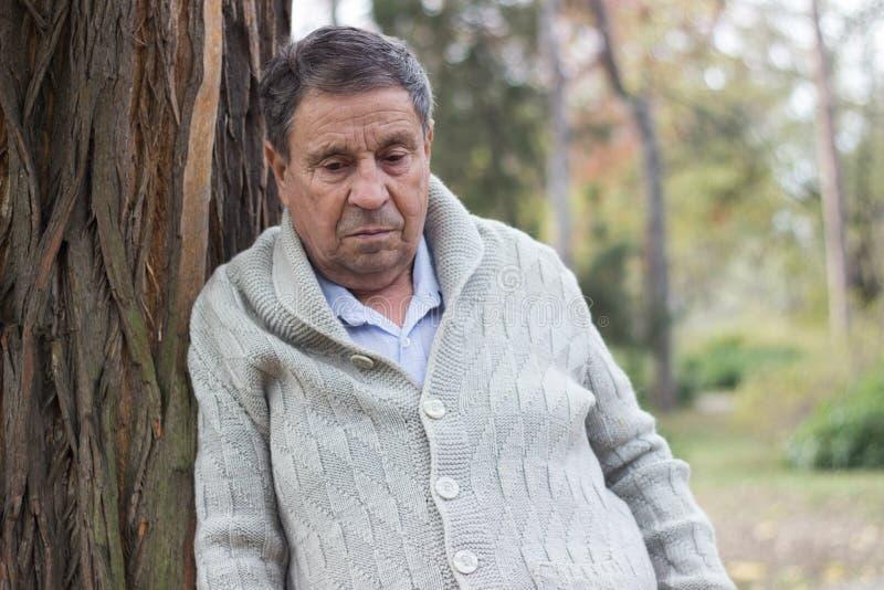 Ritratto di uomo anziano con un aspetto premuroso immagini stock