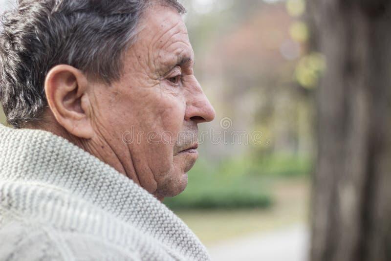 Ritratto di uomo anziano con un aspetto premuroso immagine stock libera da diritti