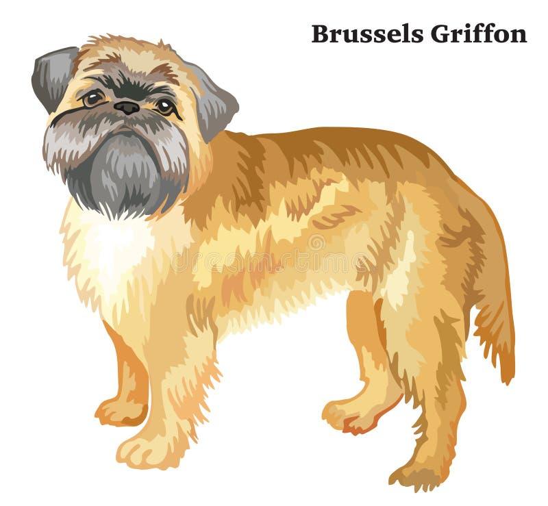 Ritratto diritto decorativo colorato del vettore di grifone di Bruxelles illustrazione vettoriale