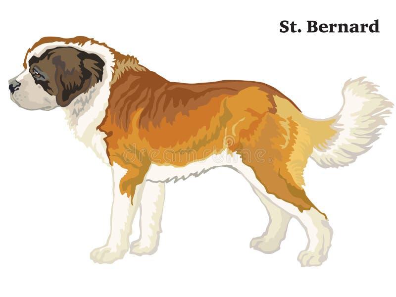 Ritratto diritto decorativo colorato dell'illustrazione di vettore della st Bernard Dog royalty illustrazione gratis