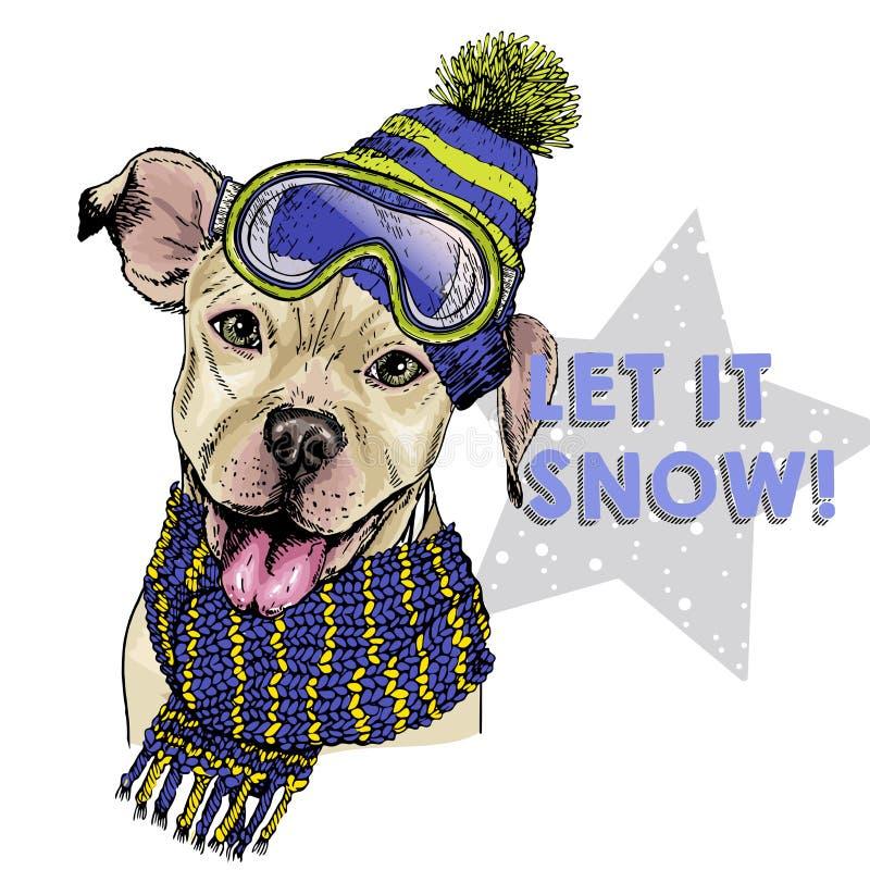 Ritratto disegnato a mano del cappello, degli occhiali di protezione e della sciarpa d'uso del cane del pitbull terrier Illustraz illustrazione vettoriale