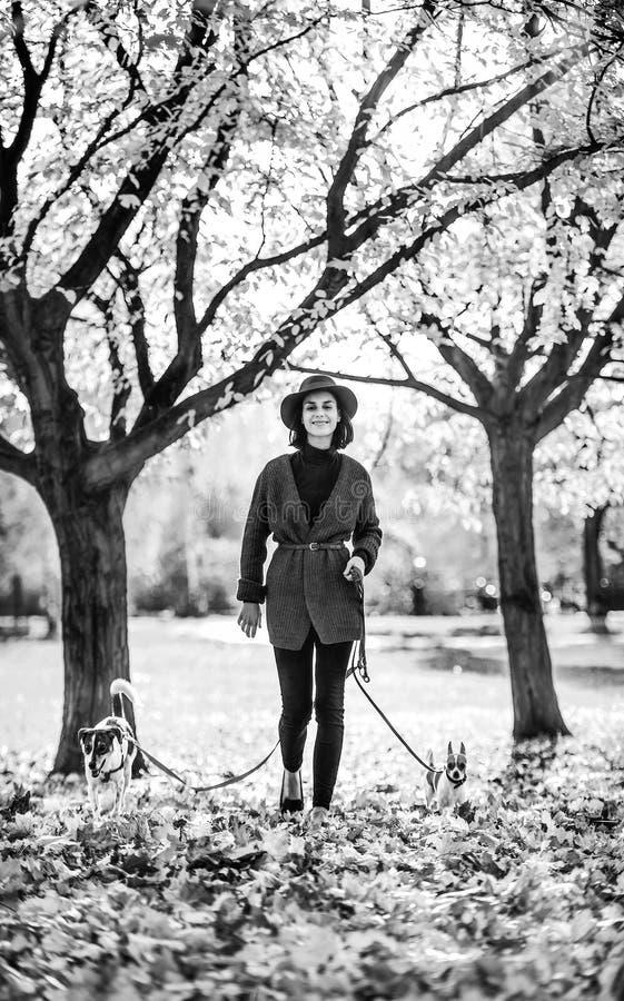 Ritratto integrale della giovane donna felice che cammina con i cani immagini stock