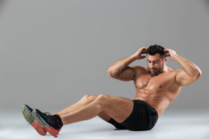 Ritratto integrale di un culturista maschio senza camicia di misura muscolare immagine stock