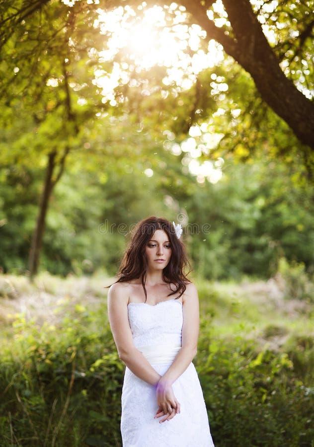 Ritratto nuziale fotografia stock libera da diritti
