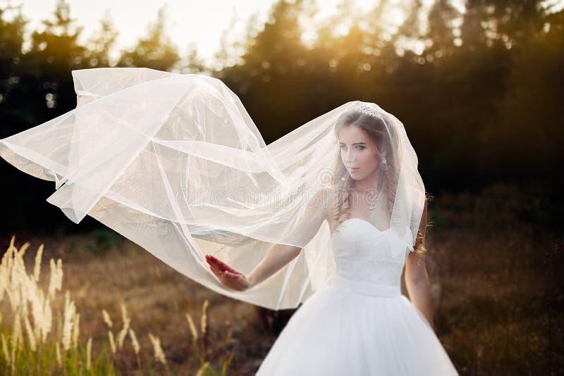 Ritratto piacevole di bella sposa con un diadema e del velo nuziale sulla sua testa fotografia stock