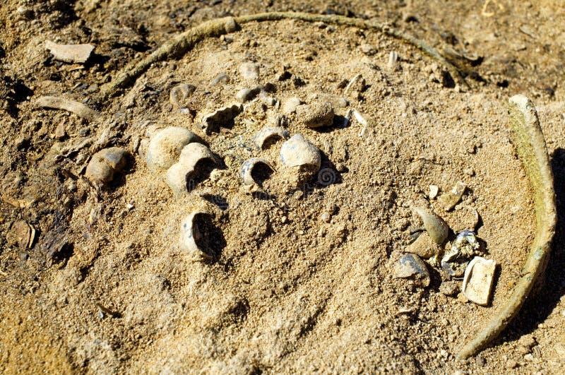 Ritrovamenti archeologici della cultura di kulai al sito dello scavo fotografia stock libera da diritti