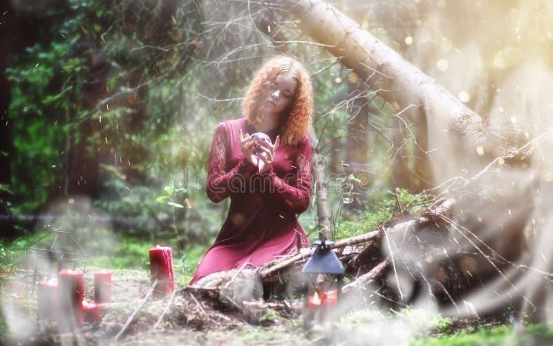 Ritual de la bruja en un bosque foto de archivo