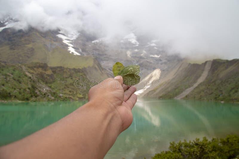Ritual der Koka zum pachamama im humantay See in Peru auf Salcantay-Berg in den Anden stockfotografie