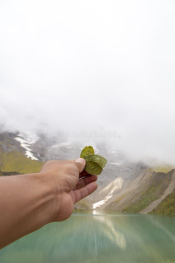 Ritual der Koka zum pachamama im humantay See in Peru auf Salcantay-Berg in den Anden lizenzfreie stockfotografie