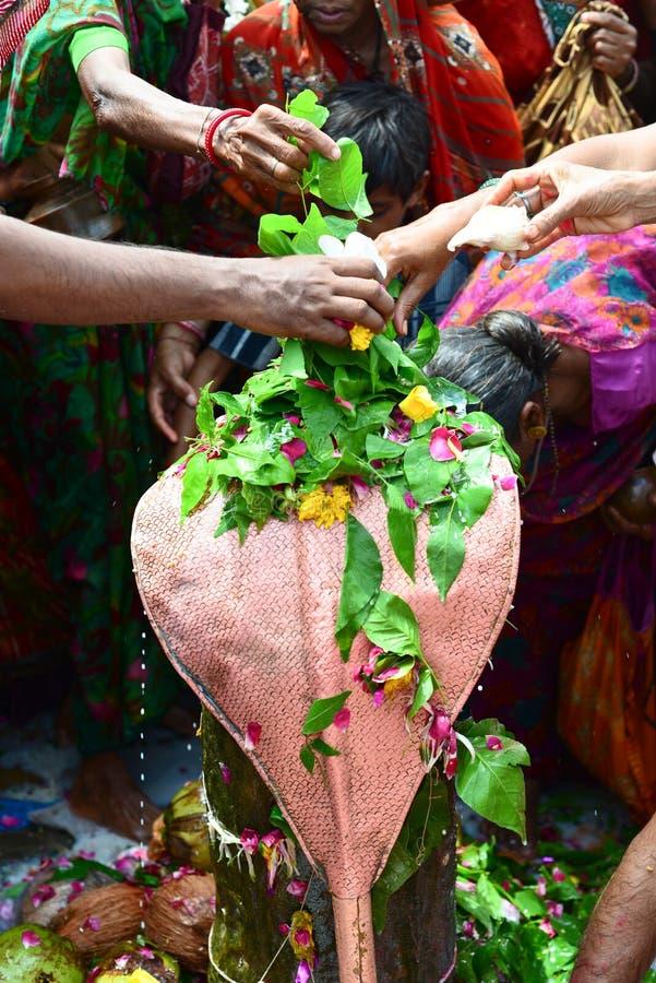 Ritual do templo hindu fotos de stock
