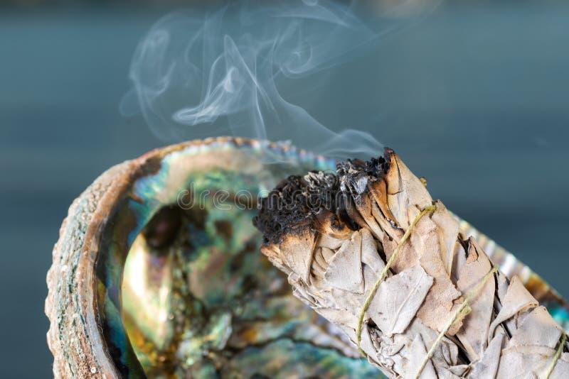 Rituel de brouillage à l'aide d'un épais paquet de feuillage de White Sage en arbalone arc-en-ciel brillant Shell sur la plage a photographie stock