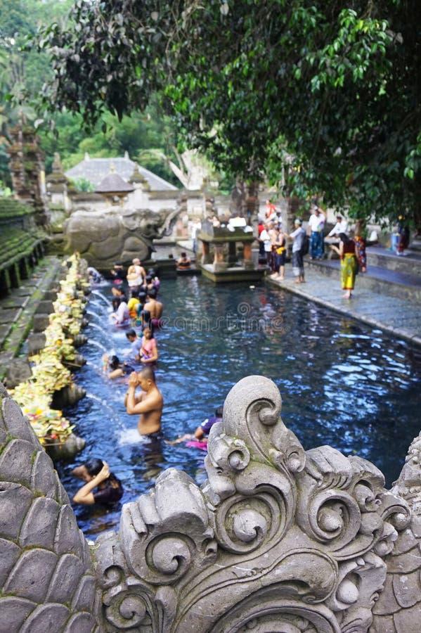 Rituell badningceremoni, Bali Indonesien arkivfoto