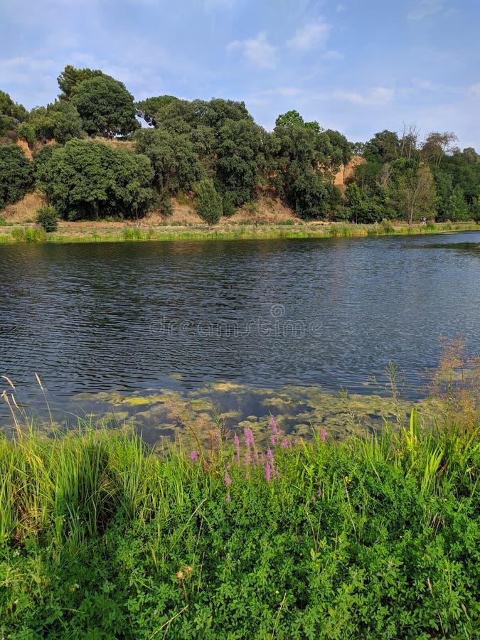 Riu Congost stock fotografie