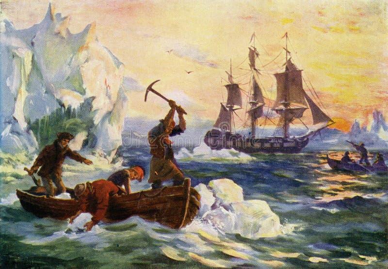 riunire acqua dolce dagli iceberg illustrazione di stock