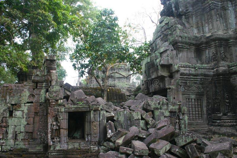 Riuns du temple Ta Phrom d'Angkor Wat photos libres de droits