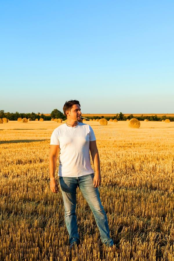 Riuscito agricoltore nel campo di frumento Tempo di raccolta fotografie stock libere da diritti