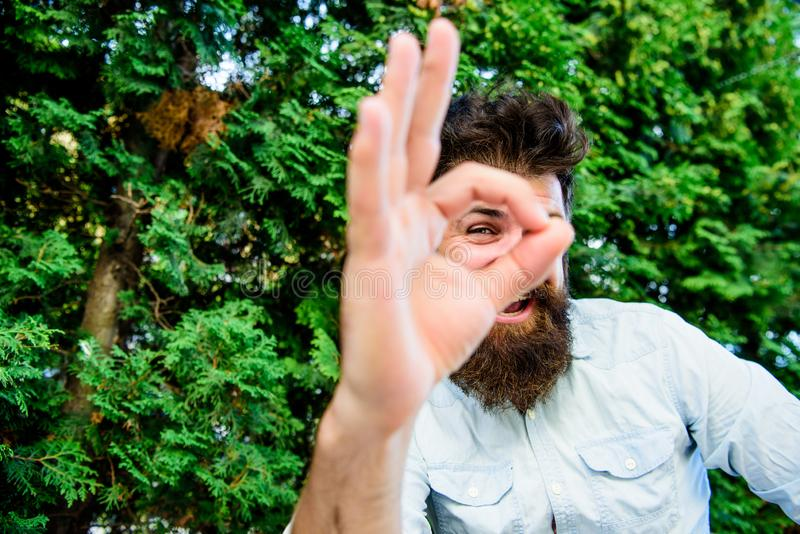 Riuscito lavoratore indipendente dell'uomo barbuto Lavoro a distanza Occupazione professionale indipendente Soddisfatto con il ri fotografie stock