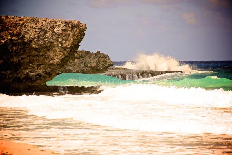 Riva-Aruba del nord immagine stock