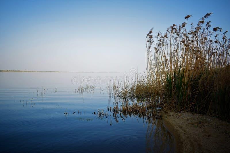 Riva calma dell'estuario immagini stock libere da diritti
