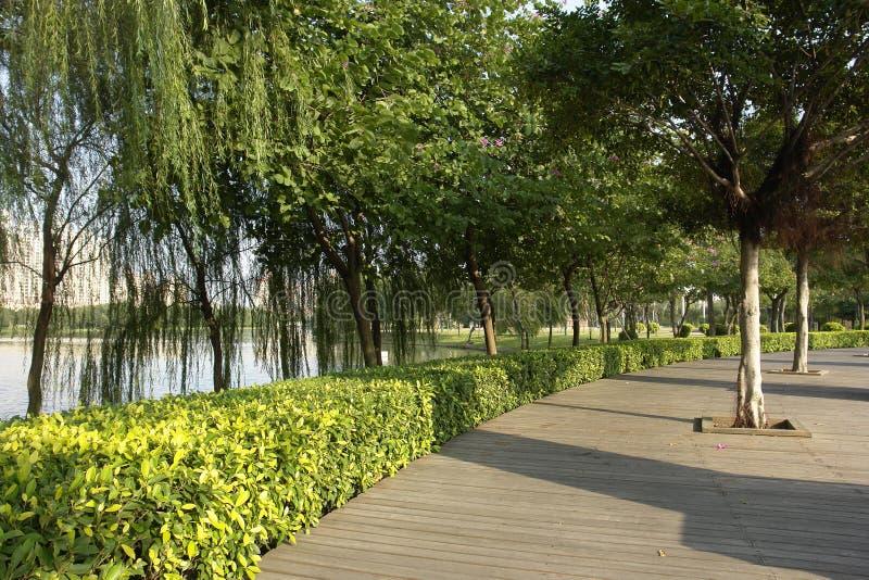 Riva Del Lago Fotografie Stock