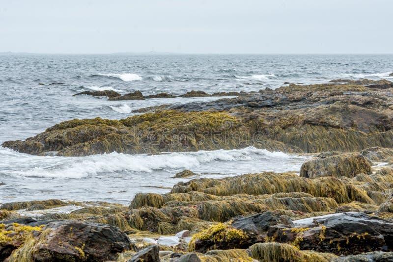 Riva del litorale a Portsmouth, New Hampshire, U.S.A. immagini stock