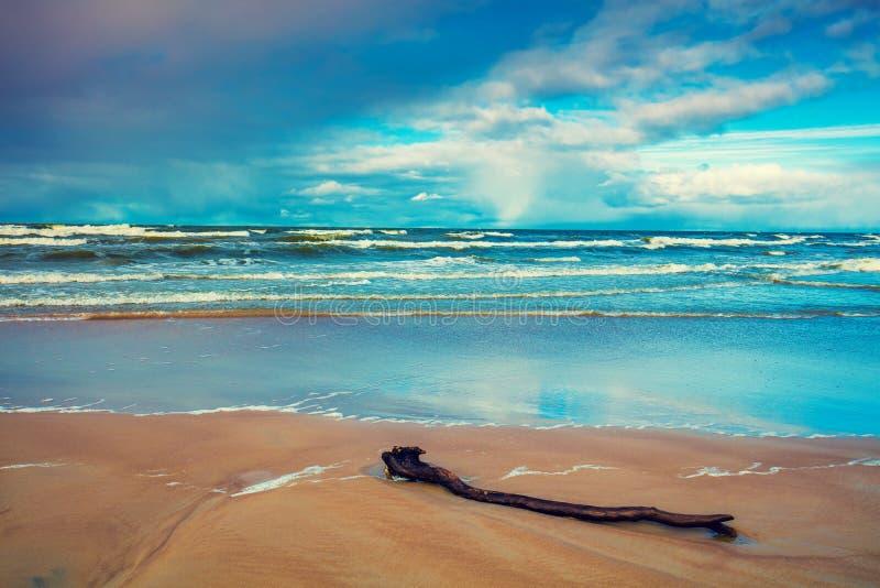 Riva del Mar Baltico Spiaggia abbandonata fotografia stock