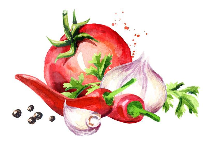 Riva sönder tomaten med ung vitlök, chilipeppar och pepparkorn Dragen illustration för vattenfärg som hand isoleras på vit bakgru vektor illustrationer