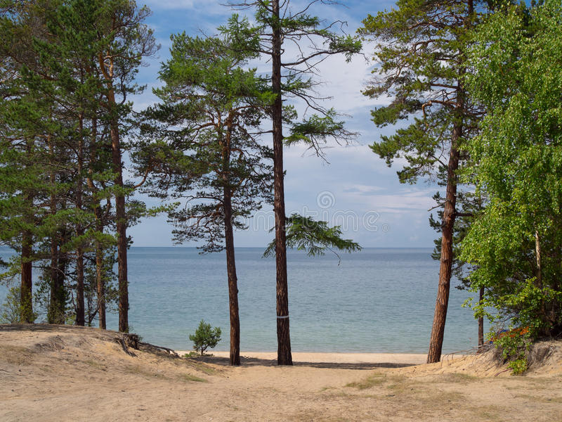 Riva sabbiosa del lago Baikal fotografie stock libere da diritti