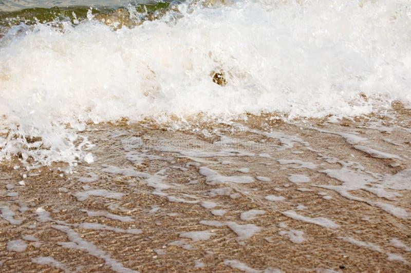 Rivage d'océan image libre de droits