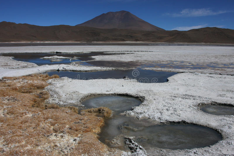 Rivage de borax de Laguna Hedionda photo stock