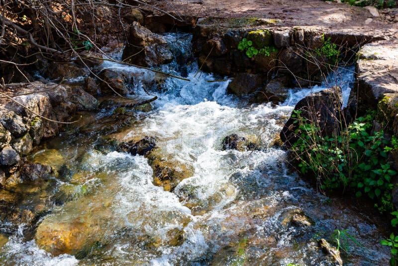 Rivage de Jordan River à l'Israël photo libre de droits