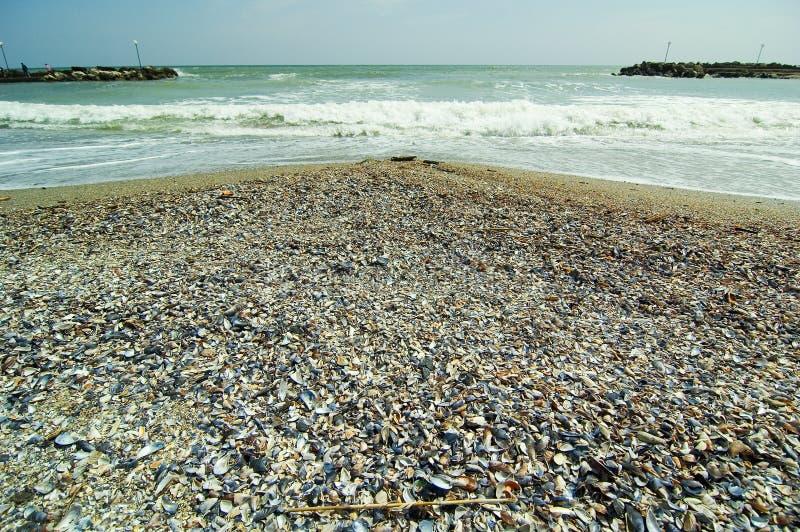 Rivage de la Mer Noire photo stock