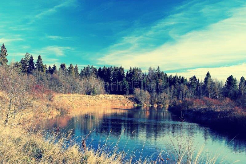 rivage de lac avec la forêt photographie stock